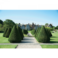 Afternoon Tea for Two at Littlecote House Hotel