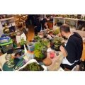90 Minute Introductory Mini Ecosystem Workshop at Botanical Boys
